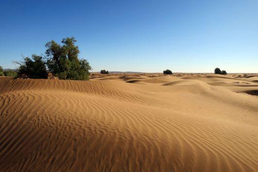 Circuito por Marruecos