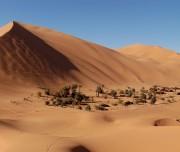 Viajes Marrakech Erg Chebbi