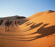 Marrakech-low-cost-viajesmarrakech-desierto-merzouga-03